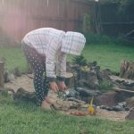 create a dinosaur garden for the kids