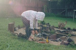 create a dino garden for the kids